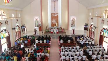 Nghi lễ, chuẩn mực và tính linh hoạt trong đời sống đạo ở vùng Công giáo Hố Nai, Đồng Nai [Phần cuối]